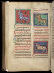 A Lion, Lioness, And Bull, In A Collection Of Medical And Herbal Texts